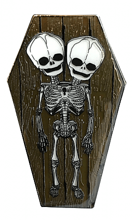 Skeleton Twins Coffin Enamel Pin