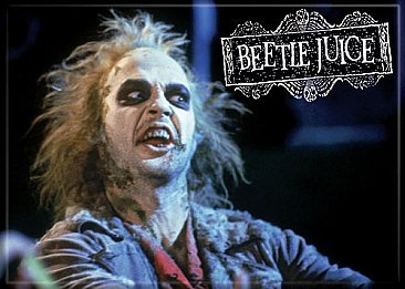 Beetlejuice Photo Magnet